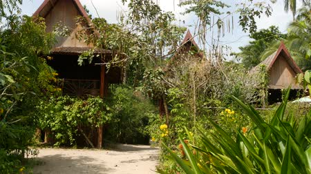 kulübe : Lovely huts near tropical tree. Wonderful shacks of small village located near amazing tropical tree on sunny day in jungle. Green life. exotic thailand village. living in nature. Stok Video