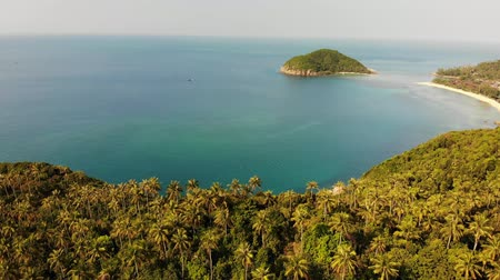 trópicos : Aerial drone view small Koh Ma island, Ko Phangan Thailand. Exotic coast panoramic landscape, Mae Haad beach, summer day. Sandy path between corals. Vivid seascape, mountain coconut palms from above Vídeos