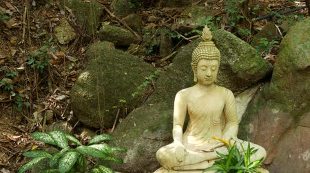 Buddha statue in wonderful garden. Lovely Buddha statuette placed near mossy boulders and green plants in beautiful quiet garden