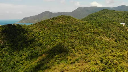 Tropical forest on island. Fantastic drone view of green jungle on mountain ridge of amazing tropical island. Blue sea. Exotic paradise panorama of rainforest