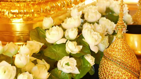 хрупкий : Flowers and golden decorations on altar. Beautiful white lotus flowers and golden royal ornaments placed on traditional altar in Thailand. Symbol of monarchy
