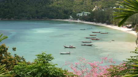 tajlandia : Boats near shore of island. Traditional colorful fishing vessels floating on calm blue water near white sand coast of tropical exotic paradise island. View through green palm leaves. Koh Phangan.