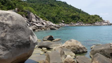 rochoso : Tropical palms and stones on small beach. Many green exotic palms growing on rocky shore near calm blue sea in Hin Wong Bay on sunny day in Thailand. Koh Tao exotic paradise island