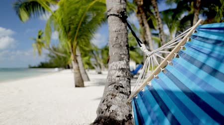 гамак : vacation, seaside, summer and leisure concept - close up of blue hammock swinging on tropical beach Стоковые видеозаписи