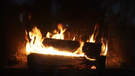 günlüğü : heating, warmth, fire and cosiness concept - close up of firewood burning in fireplace Stok Video