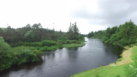 irlandia : view to river in ireland valley 10