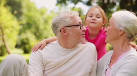 small park : senior grandparents and granddaughter at park Stock Footage