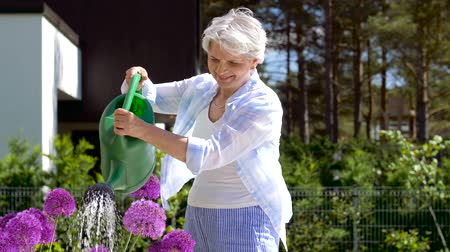 elderly care : senior woman watering flowers at summer garden