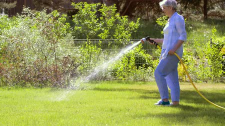 postřikovač : senior woman watering lawn by hose at garden