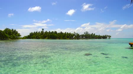 pacific islands : lagoon at tropical beach in french polynesia Stock Footage