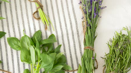 homeopati : greens, spices or medicinal herbs on table