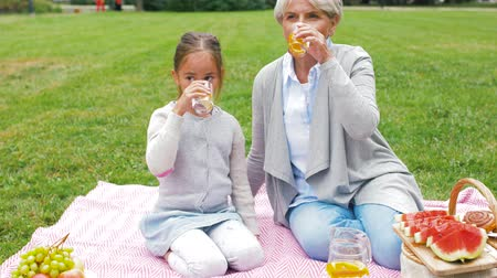 кувшин : grandmother and granddaughter at picnic in park Стоковые видеозаписи