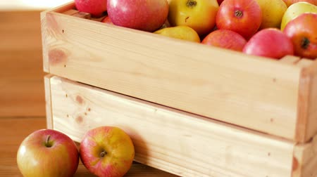 martwa natura : ripe apples in wooden box on table Wideo