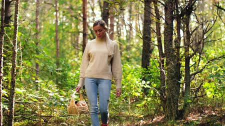 hasır : young woman picking mushrooms in autumn forest Stok Video