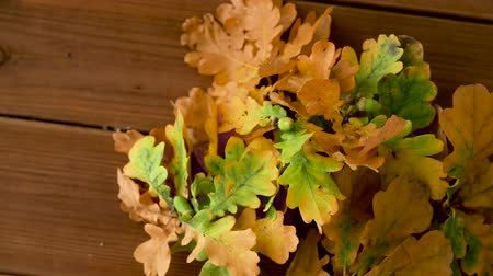 meşe palamudu : oak leaves in autumn colors on wooden table Stok Video