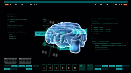 mózg : digital image of brain on computer screen