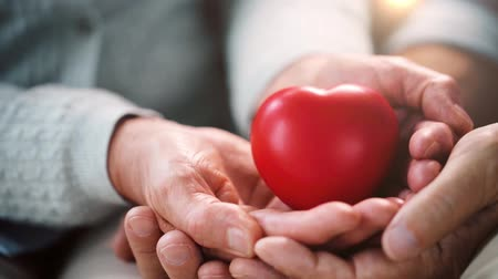 charitable : senior couple hands with red heart shape