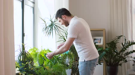 püskürtücü : man spraying houseplants with water at home