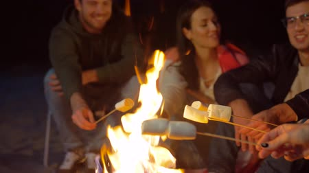 mályvacukor : friends roasting marshmallow on camp fire at night
