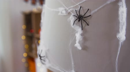 arachnophobia : halloween decoration of black toy spider on cobweb