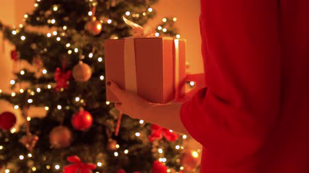 x mas : woman putting gift box under christmas tree