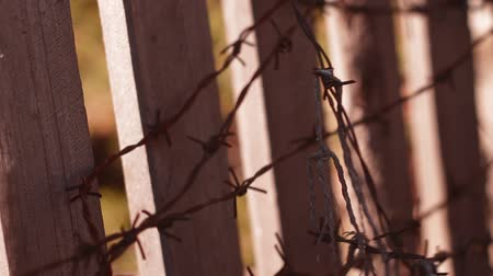 interdiction : barbed wire Stock Footage