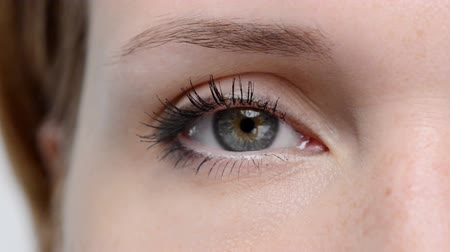 írisz : Closeup of  female eye looking and blinking
