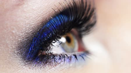 стегать : Closeup female eye with bright blue fashion eye makeup