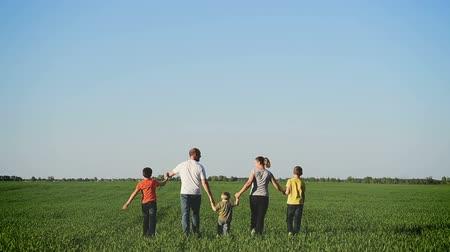 fife : Happy young family with children  walking around the field. Stock Footage