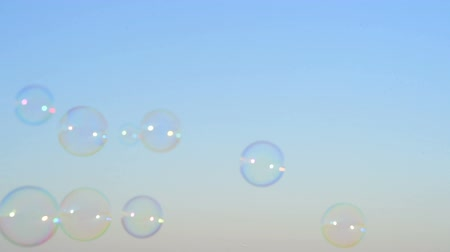 air bubble : Soap bubbles floating in the air as the summer sunsets