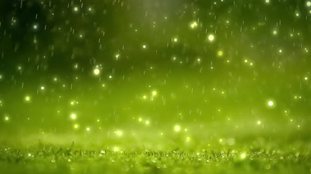 güneş ışını : Nature background. Beautiful Blurred abstract bokeh with rain drop on grass. Sunlight. Sunflare. Slow motion. HD 1080 Stok Video