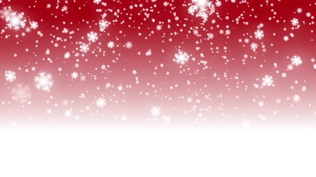 zimní : digital seamless loop christmas red background with white bokeh and stars snow falling holiday xmas hd 1080p