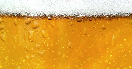 pint glass : bubbles movement inside a glass of beer with drops and foam as background seamless loop