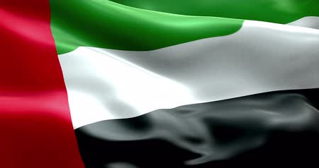 эмираты : waving fabric texture of the flag with color of united arab emirates, uae 3d animation