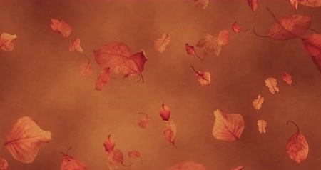 fall down : autumn leaves falling down on brown background, autumn color concept