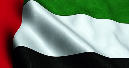 Объединенные Арабские Эмираты : waving fabric texture of the flag with color of united arab emirates, uae 3d animation