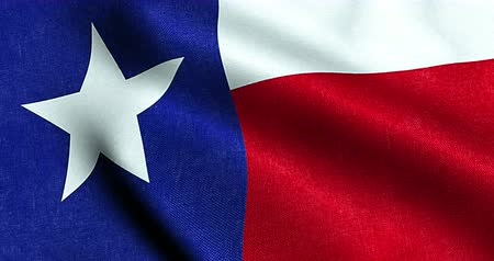 teksas : waving fabric texture of the flag with blue and red color of nation texas, nation of the usa, united states 3d animation Stok Video
