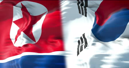 separado : half north korea flag and half south korea flag, waving flag movement, crisis state diplomacy and north korea for nuclear atomic bomb risk war concept Stock Footage