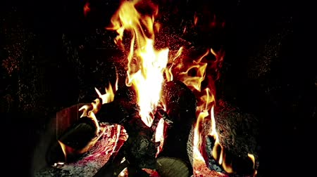 firebox : real fire flames burn movement with branches of wood, fireplace in slow motion, on black background Stock Footage