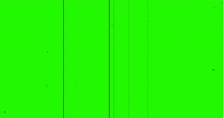 artifacts : chroma key green screen vhs background realistic flickering, analog vintage TV signal with bad interference and horizontal lines, static noise background,