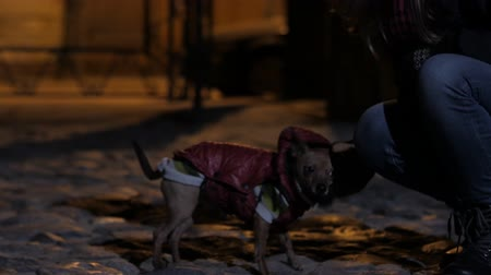 pincher : Teen girl with a little doggy on a night cold street. 4K UHD