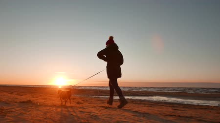 cimborák : Woman running, walking, playing and having fun with her doggy at sunset on a beach near Baltic sea in spring. Colorful landscape.