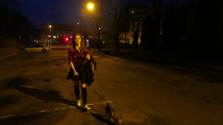 pincher : Teen girl with a little dog on a night street. Stock Footage
