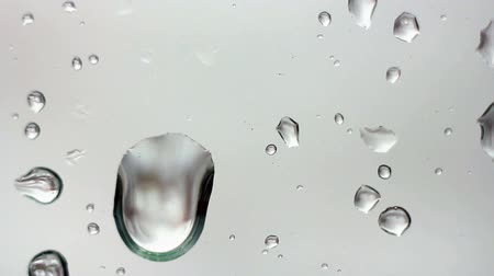vízcseppek : Drops on Glass