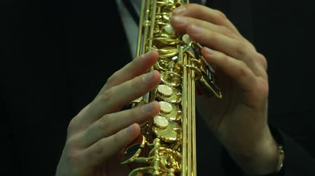 woodwind : mans hands playing a wind instrument