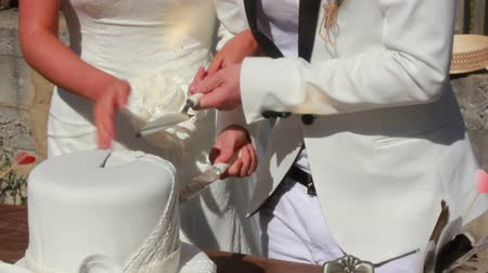 wedding cake : newlyweds cut the wedding cake knife