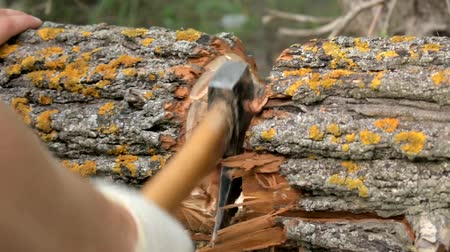 Woodcutter cuts wood with an ax. Video close-up in the frame can be seen hands and an ax. Stock Footage