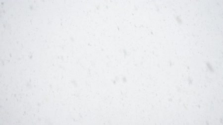 Snowfall against the sky. Not video effect, but real video shooting. Stock Footage