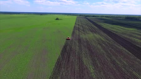 cultivo : Agriculture field and tractor Stock Footage