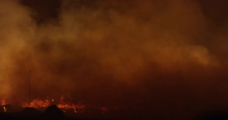 bush fire : Wildfire at night. Forest burning smoke.